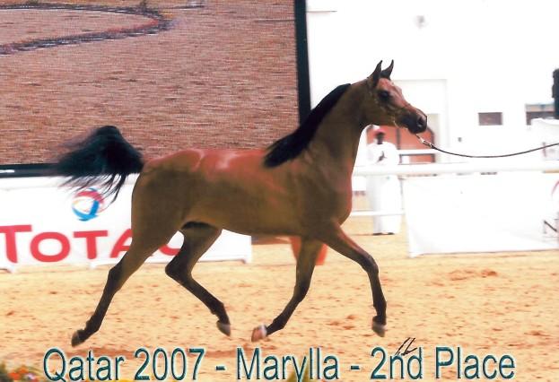 MArylla_Qatar07