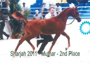 Muhtar_Sharjah11