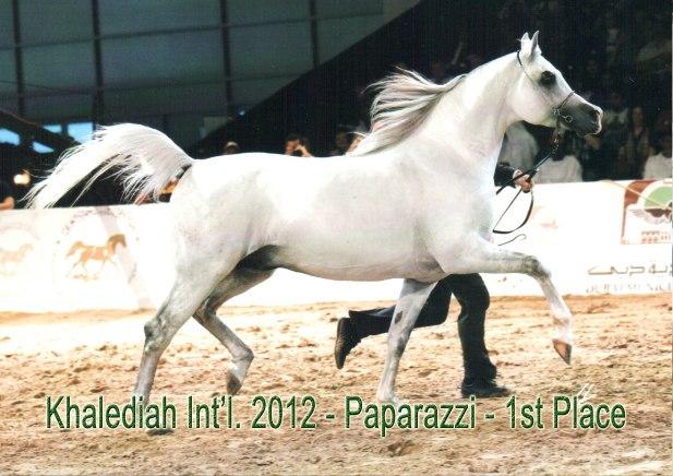 Paparazzi_khalediah 2012