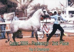 Paparazzi_Qatar09
