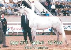 Sadikah_Qatar10