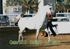 Sadikah_Qatar2013